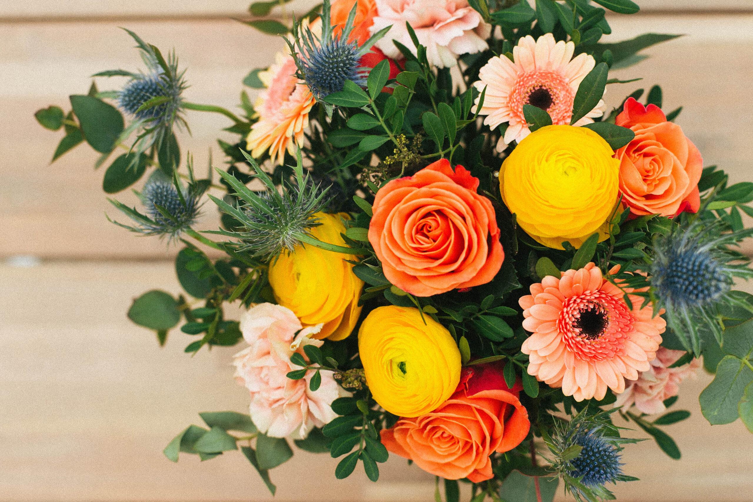 fiori Colvin