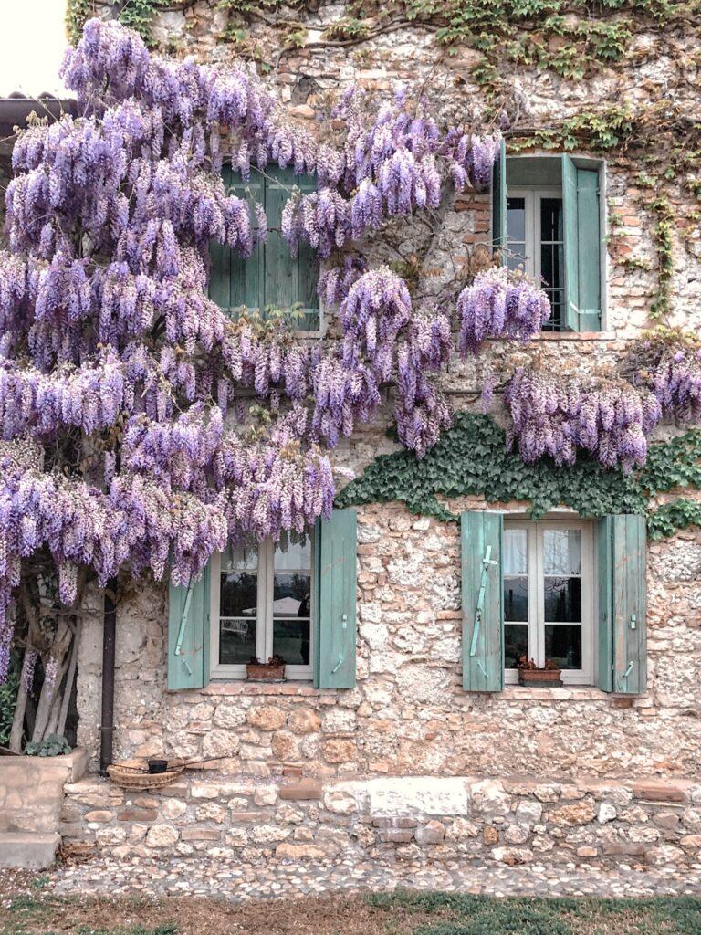 Maso di villa Glicine