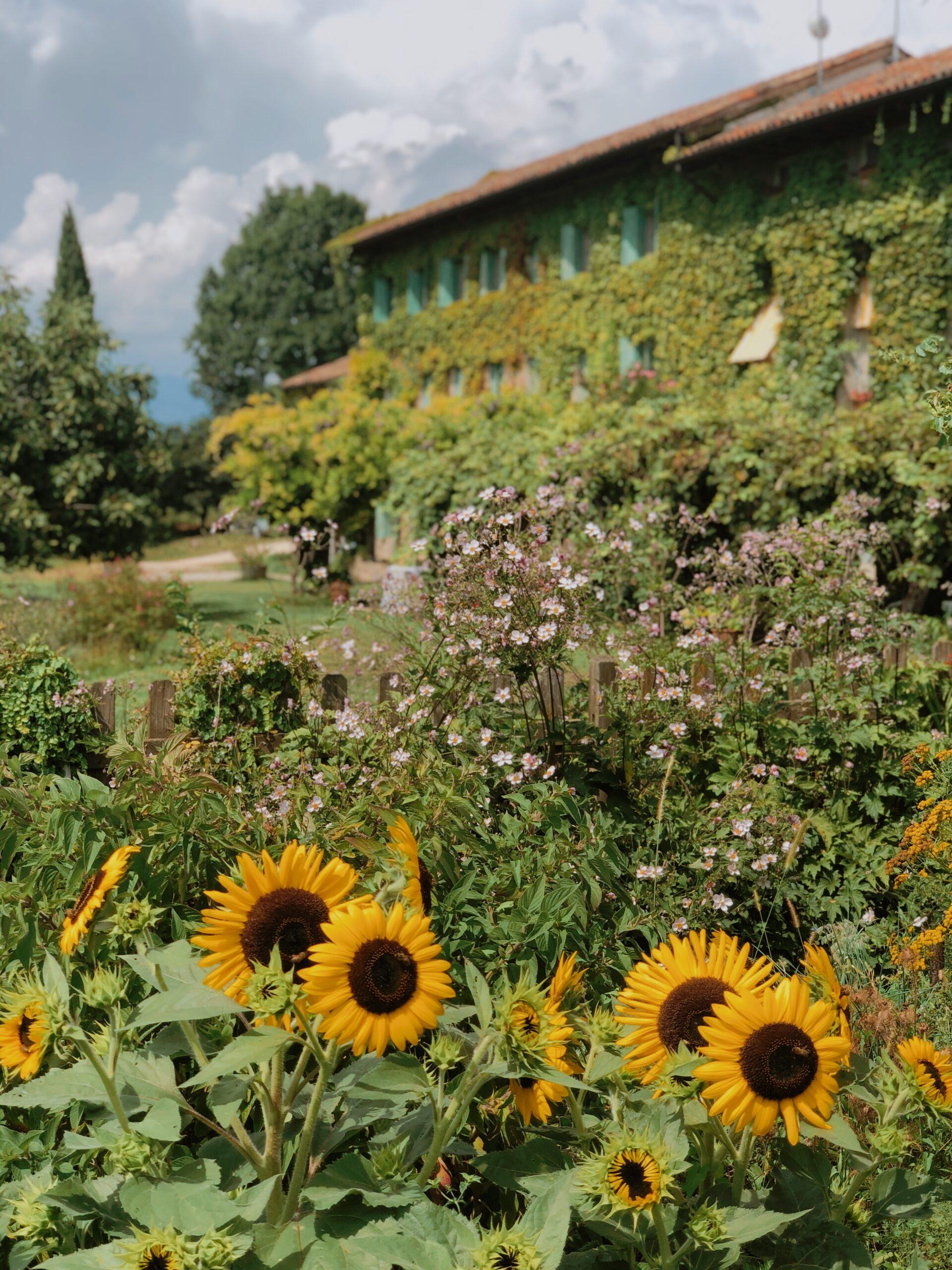 giardino relais Maso di Villa