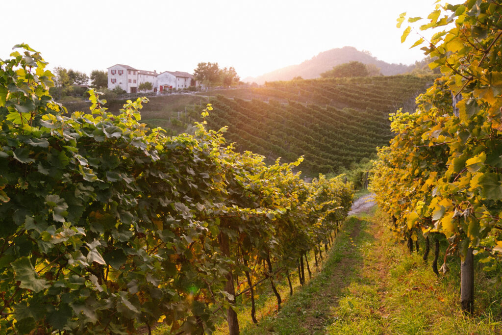 Dormire colline Treviso